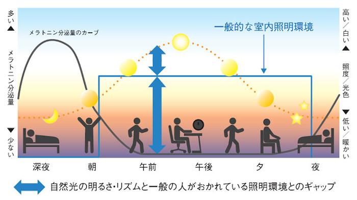 光と体内リズムの関係